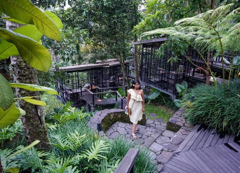 Views Over Rainforest HOSHINOYA Bali Resort Luxury Pool Villas in Ubud