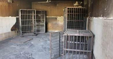 LLL - Live and Let Live - ISIS has executed 75 prisoners in the city of Mosul, Iraq