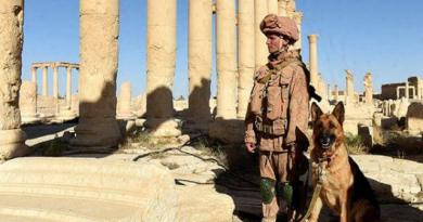 LLL-Live Let Live-Russian soldier killed by ISIS in attack near Syria's city of Palmyra