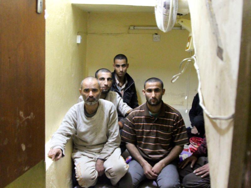 LLL-Live Let Live-ISIS Prisoners