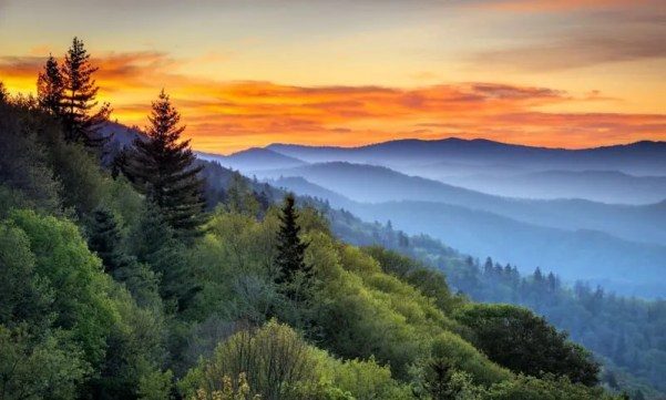 Sunrise at east coast national park Great Smoky Mountains