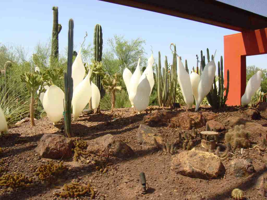 Things To Do in Scottsdale - February 2017 - Scottsdale AZ Real ...