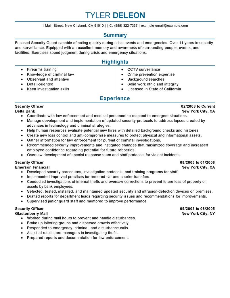 Example Resume Protection Executive