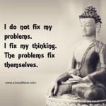 I do not fix my problems I fix my thinkinghellip