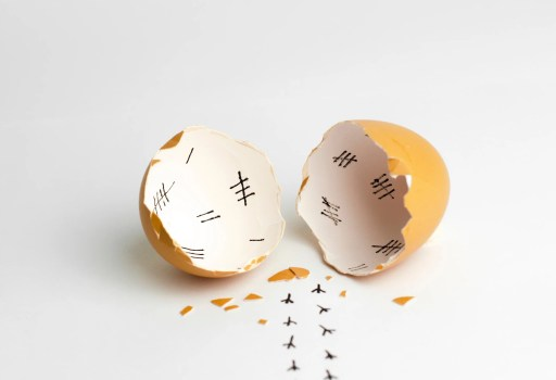 Broken egg shell with tally lines inside