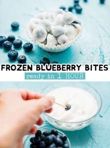 frozen yogurt blueberry bites