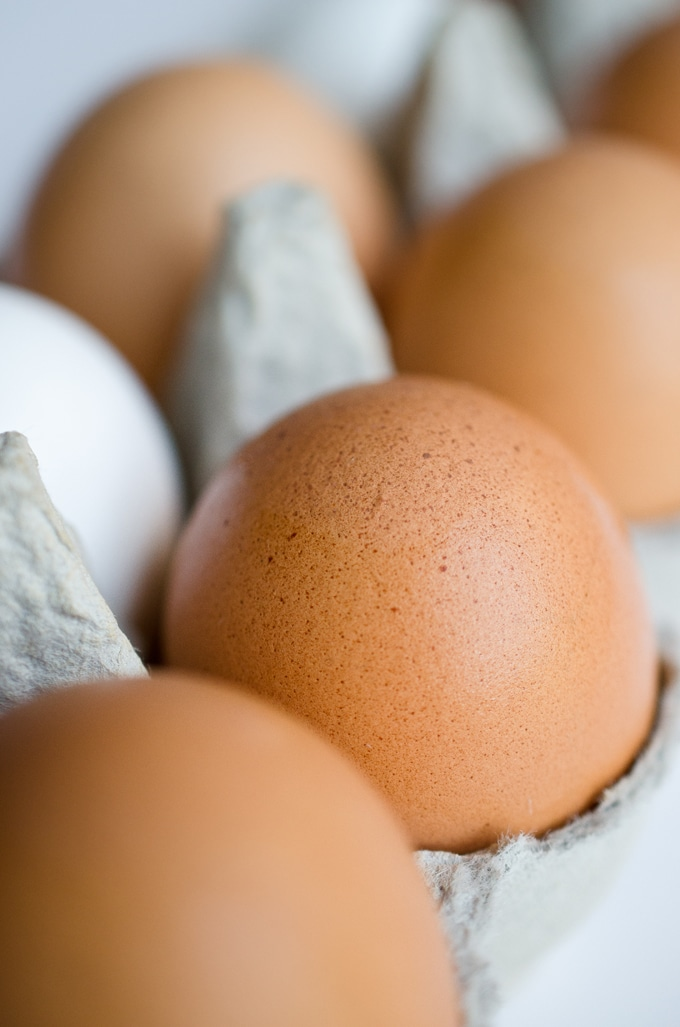 Close up photo of a brown egg in a carton