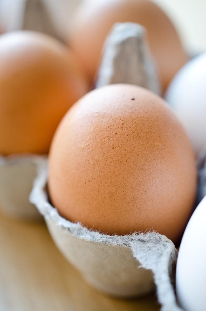 Closeup photo of a brown egg in a carton