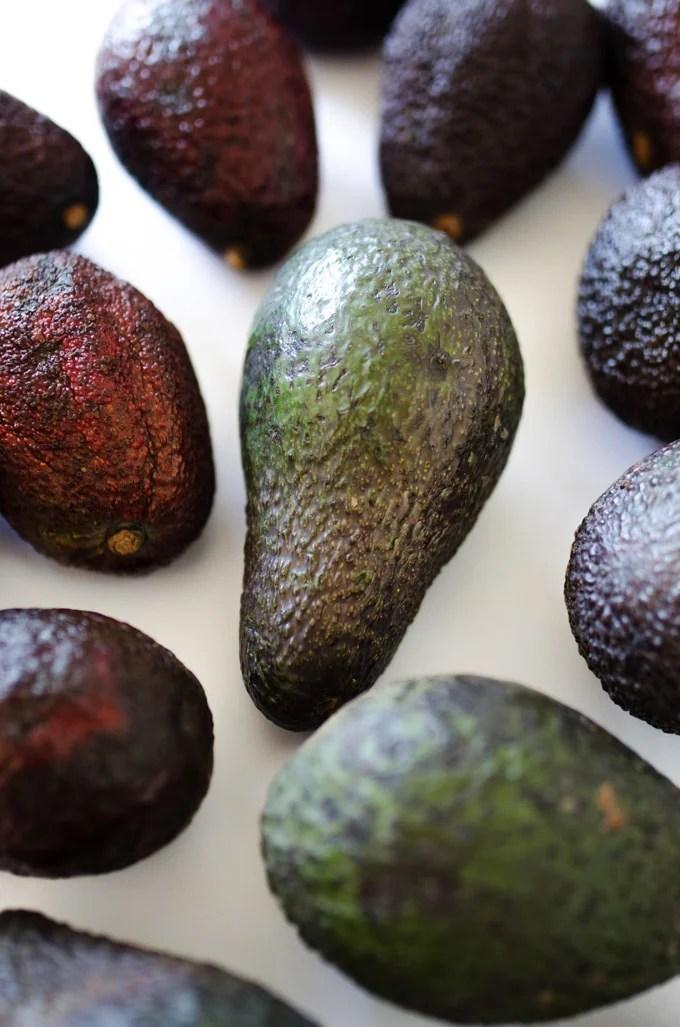 Photo of avocados on white background