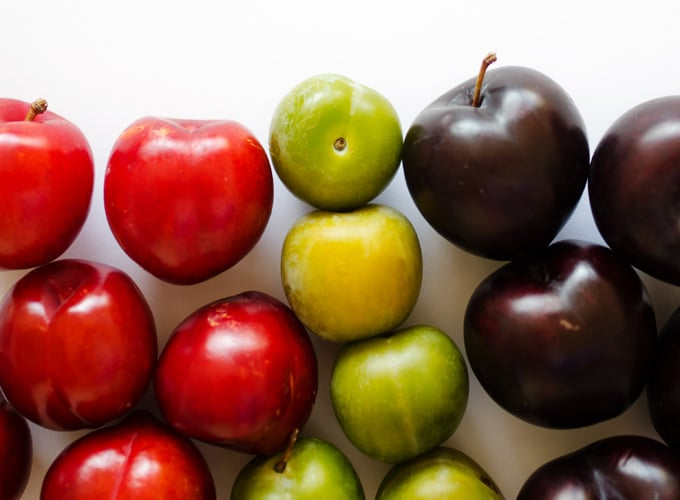 All About Plum