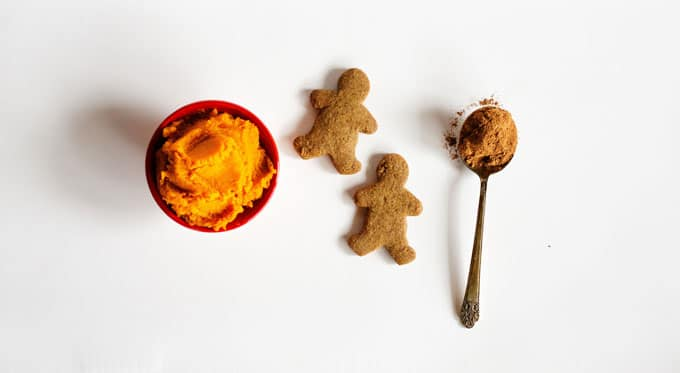 Ingredients to make Pumpkin Gingerbread Hot Cocoa