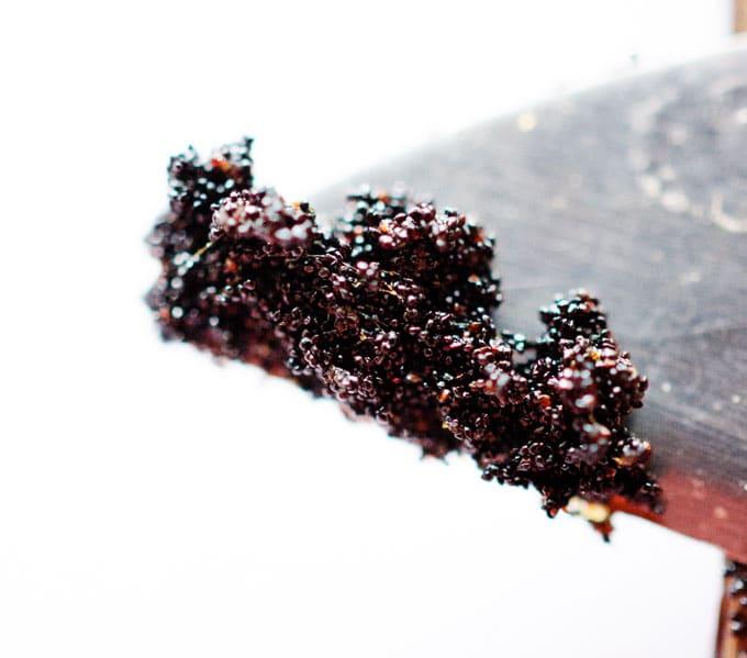 Macro photo of vanilla seeds