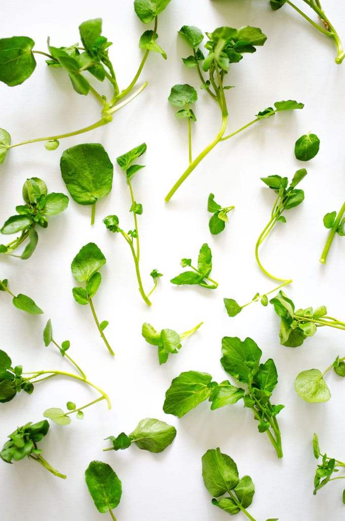 Watercress leaves on a white background