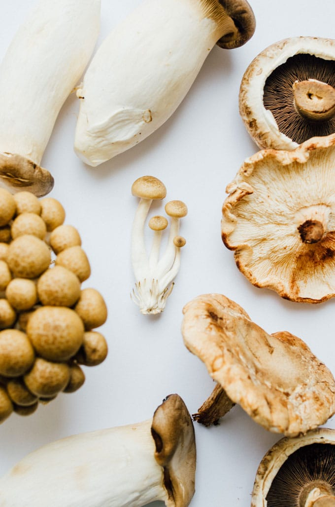 Types of mushrooms on white paper - Running through the main types of mushrooms and how to use them to add savory, meaty flavor and texture to your vegetarian cooking!