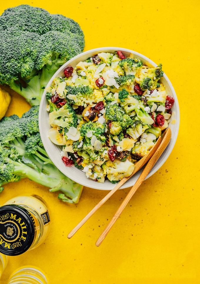 Grilled broccoli salad in a bowl with lemon, feta, an cranberries