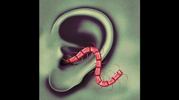 """Listen: Thee Oh Sees """"You Will Find It Here"""""""