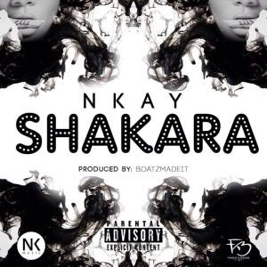 Shakara-Art-300x300