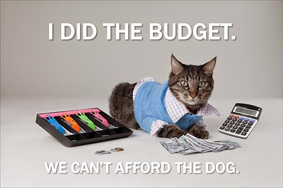 workingonabudget-cat