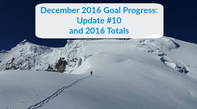 December 2016 Goal Progress: Update #10 and 2016 Totals