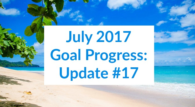 July 2017 Goal Progress: Update #17