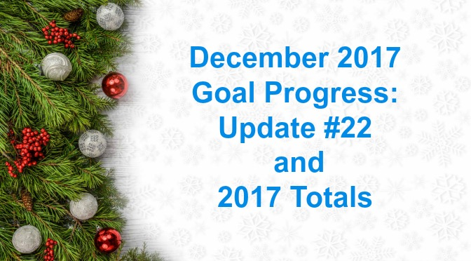 December 2017 Goal Progress: Update #22 and 2017 Totals
