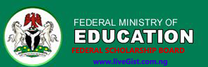 Bilateral Education Agreement Scholarship