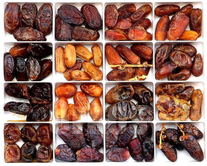 Different types of Dates