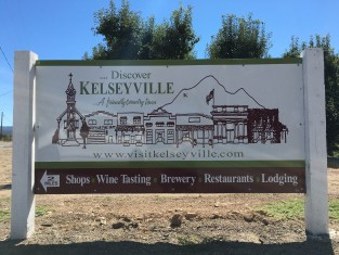 Kelseyville Homes for Sale