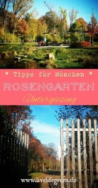 Pinterest-Pin: München Tipp Rosengarten in Untergiesing