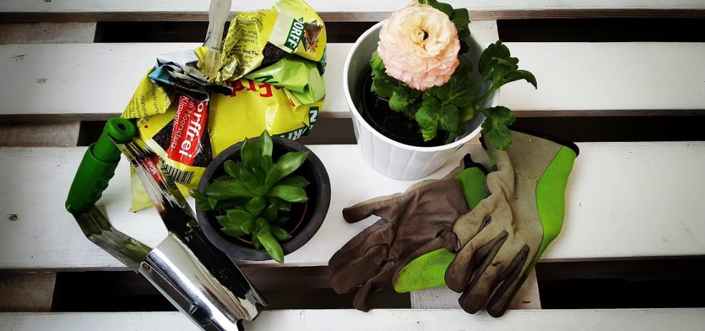 Blumenerde-torffrei und nachhaltig