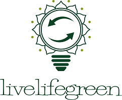 Nachhaltigkeitsblog livelifegreen | Ideen und Tipps für Klimaschutz, Zero Waste und Nachhaltigkeit im Alltag