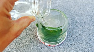 Becher-Lupe mit Wasser vergrößern