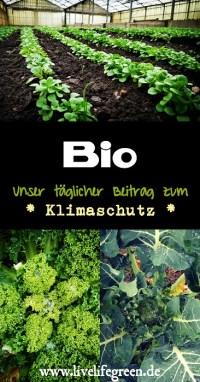 Pinterest-Pin: Bio-angewandter Klimaschutz