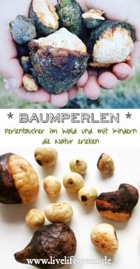 Pinterest-Pin: Baumperlen und Hexeneier sammeln im Wald