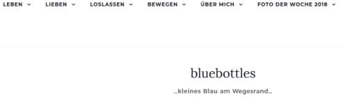 Nachhaltigkeit Blog: bluebottles