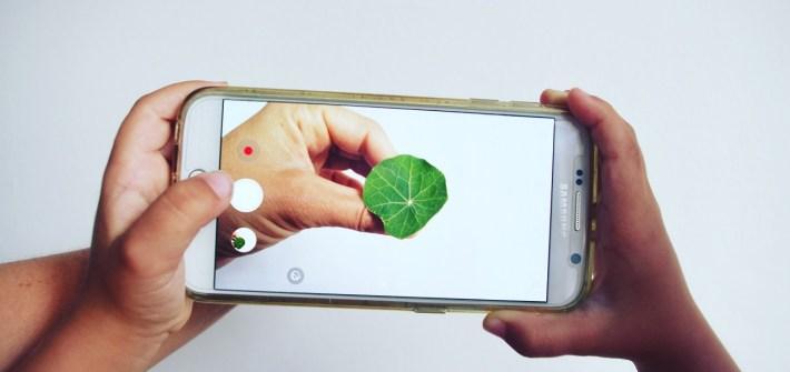 Grüne Apps kleine Helfer für mehr Nachhaltigkeit im Alltag