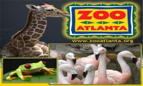 Zoo-Atlanta[1]