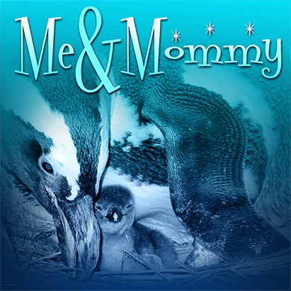 meandmommyheader_penguin_411x411[1]
