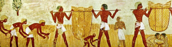 Ancient Egyptians Harvesting Wheat