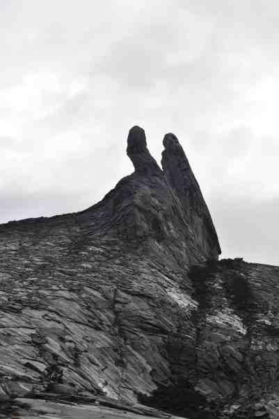 climb mt.kinabalu