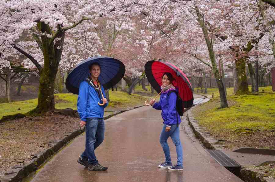Romantic Getaway in Japan Cherry Blossoms