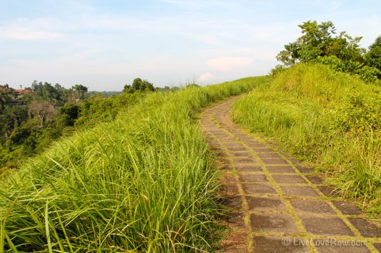 Campuhan-nice-road.jpg ubud, Bali photo