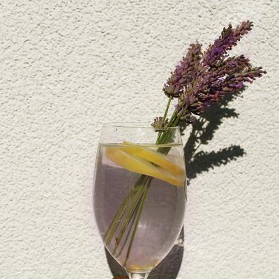 Lavender-Iced-Tea-Recipe-1