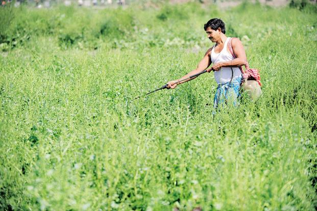 Farmers' welfare is linked to the investment in agriculture and irrigation, which have suffered funding cuts after recommendations of the Fourteenth Finance Commission were adopted. Photo: AFP