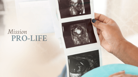 New PTL Pro-Life Training Course!