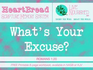 What's Your Excuse? + free printable workbook {HeartBread}