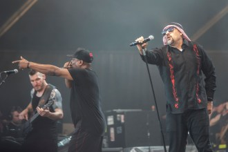 prophets-of-the-rage-hellfest-18-06-2017-10