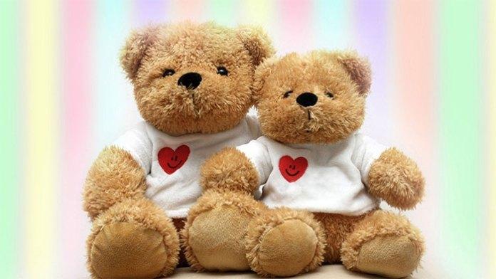 Teddy Day Celebration - Valentine Week
