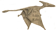 Pterosaur seen in Cuba, in 1971, sketched by Eskin Kuhn