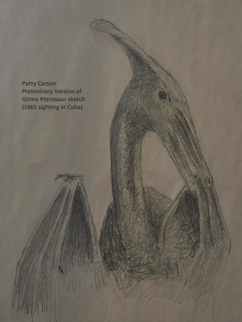 preliminary sketch by Patty Carson, of the pterosaur she saw in Cuba in 1965